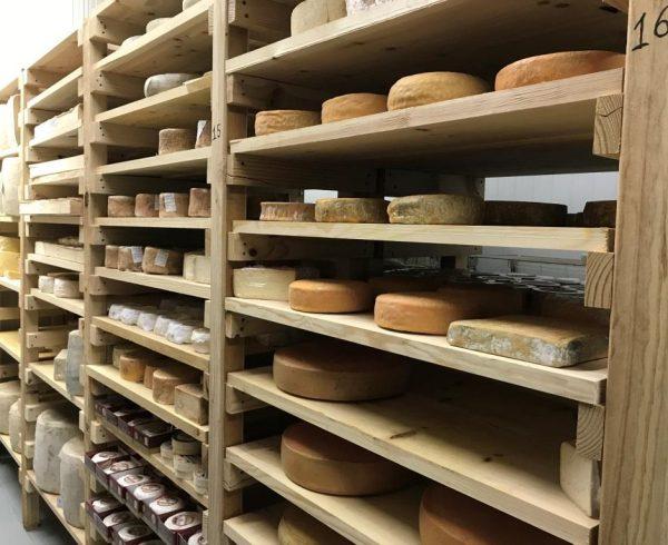 Emprender haciendo queso